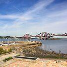 Harbour and Bridge by Tom Gomez