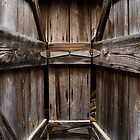 Between Two Doors by Peter Baglia