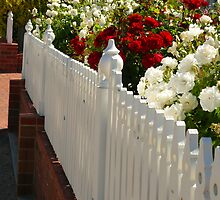 white picket fence by bobby1