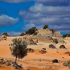 Australian Desert by Gerard Rotse