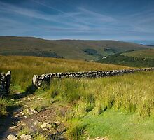 Birks Fell from Buckden Rake by Andrew Leighton