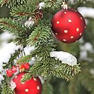 Red Christmas balls on snowy fir by pogomcl