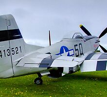 P51 Mustang - Shoreham Airshow 2010 by Colin  Williams Photography