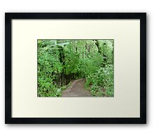 The Path in Bath - England Framed Print