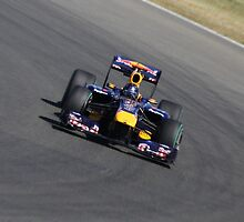 Red Bull RB6, Sebastian Vettel by Ben Luck