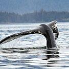 Whale #1638--Broken But It Still Works by Gina Ruttle  (Whalegeek)