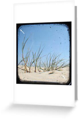 Grassy Dunes - TTV #1 by Kitsmumma