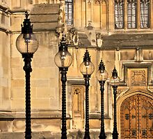 London Portfolio - Lights of Parliament by Steve Burke
