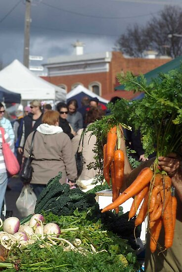 Winter Vegetables at Talbot Farmers Market by DaBimages