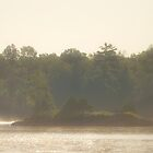 Island in the Mist by GailDouglas