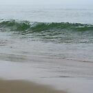 Sand n Surf by Jennie L. Richards