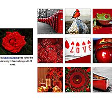 Love Red  The Most Popular Entry in This Challenge  by Naveen  Sharma