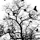 The Birds by Keats68