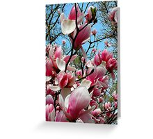 Ahh..Spring..☺☺☺☺ Greeting Card