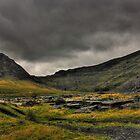 Cwmorthin Landscape by Emma Wright