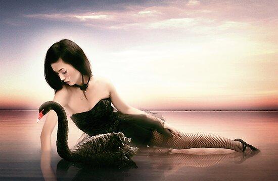 Black Swan by Matteo Pontonutti