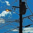 Puertorican lightpole by Turtle6