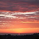 Spring Sunrise, Terranora NSW by Odille Esmonde-Morgan