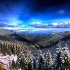 Winter Magic by Dragos Dumitrascu