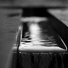 1 Water by Dragomir Vukovic