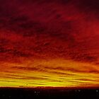 Fire In The Sky - Sydney - Australia by Bryan Freeman