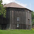 Not Your Father's Barn by Monnie Ryan