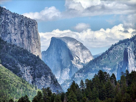 Valley View of El Capitan and Half Dome by Bunny Clarke