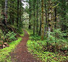 Umpqua River Trail by Leah77