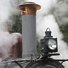 Smoke Stack - Puffing Billy by glennmp
