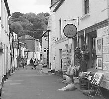 Polperro Village by Andrew Young