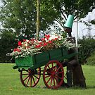 Wooden Man and Flower Barrow  by Dawnsuzanne