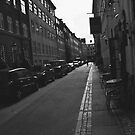 Copenhagen by Robert Drobek