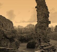 Ruins, Denbigh Castle by artfulvistas