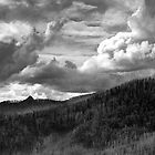 Clouds on the Horizon by Jenni Tanner