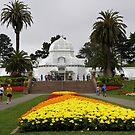 Conservatory of Flowers, San Francisco by Patty (Boyte) Van Hoff