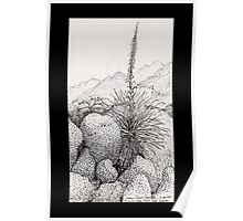 A Desert Scene North of Mount Lemmon, Arizona Poster