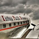 Niki DC3 - The HDR Way by HKart