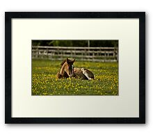 Just give me a minute! Framed Print