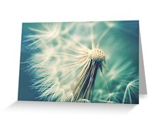 Not sure when you stop thinking dandelions are beautiful... Greeting Card