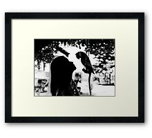 Birds (the girl and the parrot) Framed Print