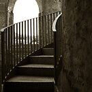 viewing stairs @ tintern abbey by ragman