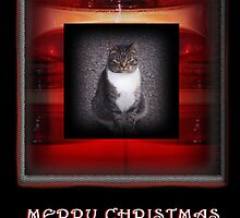 Merry Christmas Cat  by Jonice