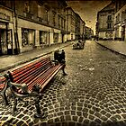 Street Seat by Evelina Kremsdorf