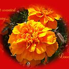 I LOVE YOU in Red and Orange Flower by Dawnsuzanne