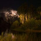 Lakewood Park lightning storm by Larry  Grayam