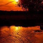 Stour Sunset by Clive