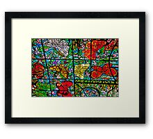 Butterfly Crystal Ceiling. Xcaret Eco Park. Mexico Framed Print