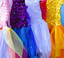 Fairy Dresses by Jennifer Hulbert-Hortman