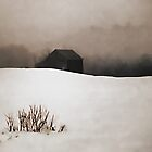Old Barn - Fog &amp; Snow by T.J. Martin