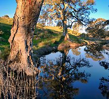 Mannum Falls Reflections by Bill  Robinson